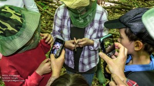 A volunteer holds a rare Ribbon Snake while onlookers take pictures to submit to the Ontario Nature Reptile and Amphibian Atlas. Photo by Devin Sturgeon