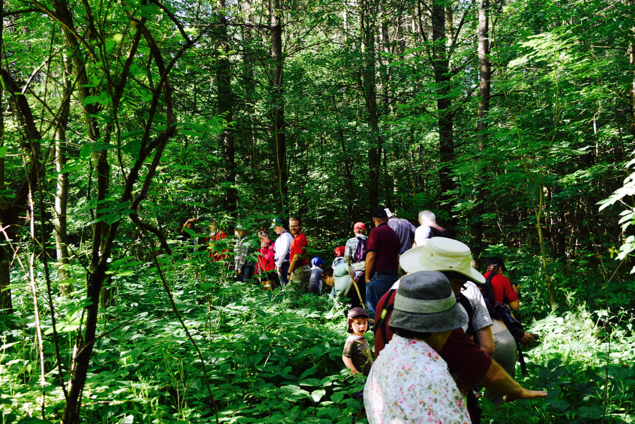 George G. Newton Reserve is a great place to hike. Be sure to watch out for poison ivy! Photo by Rachel White