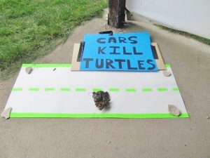 Sign display warning attendees the hazards face while turtles cross the road